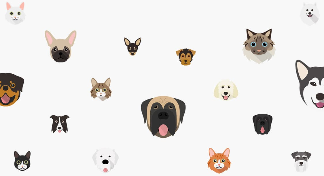 Selection of dog and cat icons