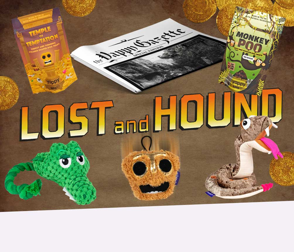 Lost and Hound Box