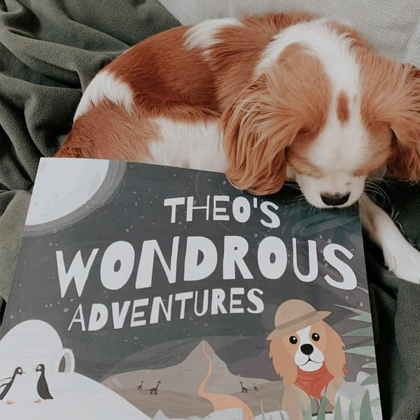 Theo's Personalised Wondrous Adventures book