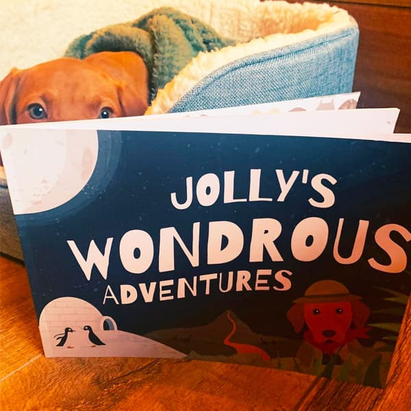 Jolly's Personalised Wondrous Adventures book
