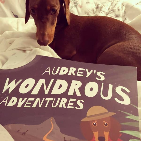 Audrey's Wondrous Adventures book