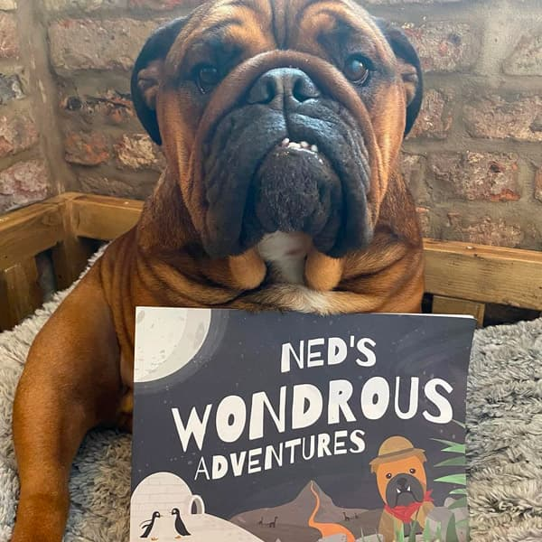 Ned with his Personalised Wondrous Adventures Book
