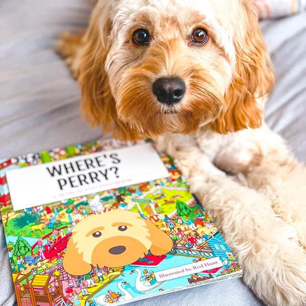 Perry with his Personalised Cockapoo Where's Book