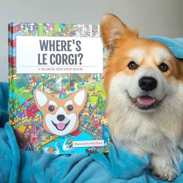 Corgi sat next to Personalised Corgi search and find Book
