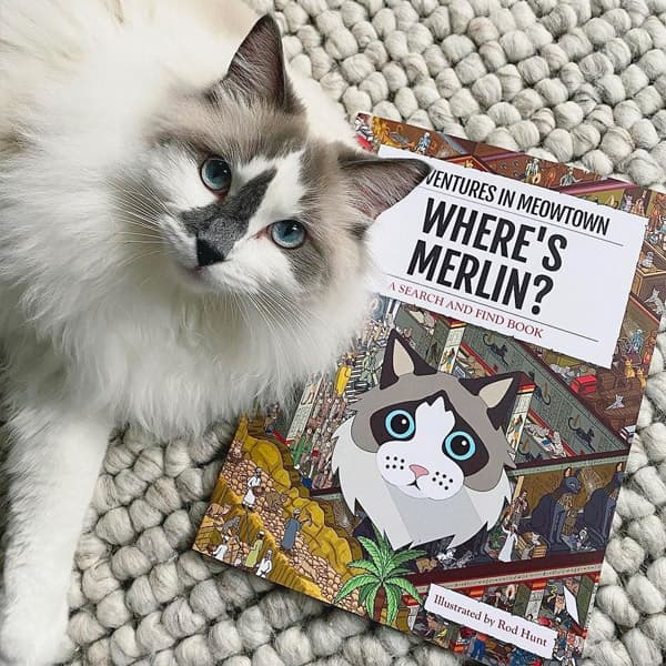 Ragdoll Merlin with a Personalised Where's Merlin Book