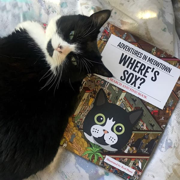 Sox sat next to our Personalised Where's Cat Book