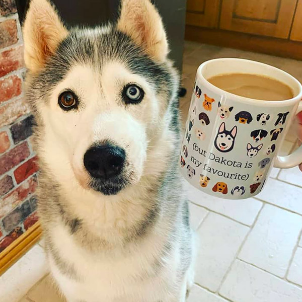 Dakota with a matching Husky Yappicon Mug