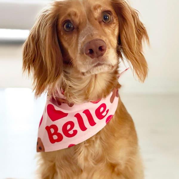 Belle in her Personalised Heart Pattern Bandana