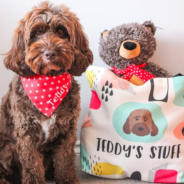 Teddy the Chocopoo with his Personalised Stuff Bag
