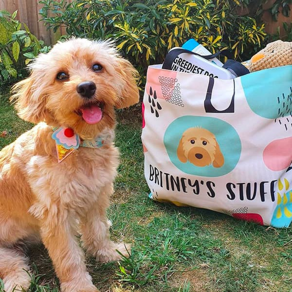 Britney ready to go with her Personalised Cockapoo Bag