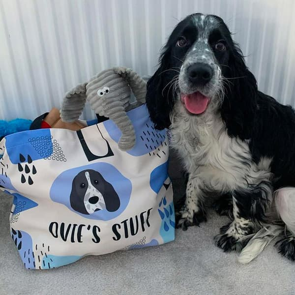 Ovie posing next to a stuffed Personalised Bag