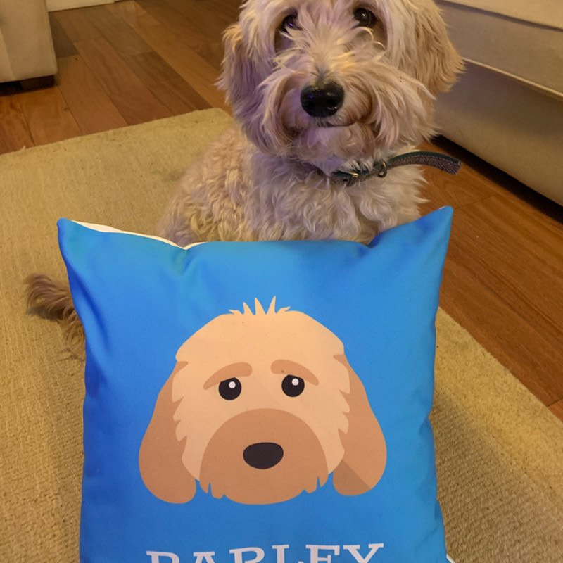 Barley with his Personalised Icon Cushion