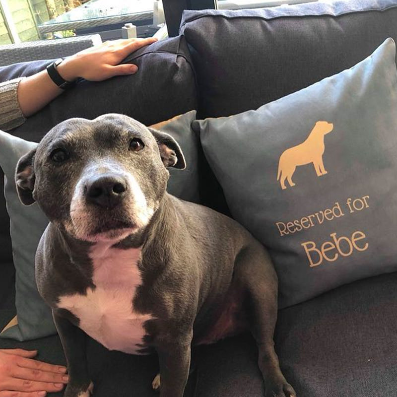Bebe with her Personalised Reserved For Cushion
