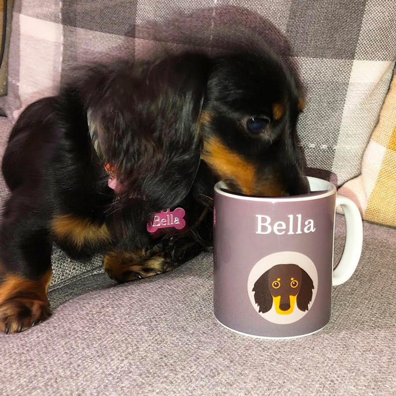 Bella with her Personalized Icon Mug