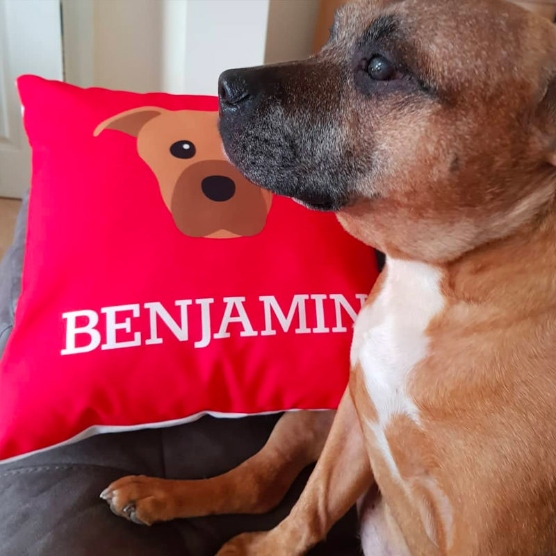 Benjamin with his Personalised Icon Cushion