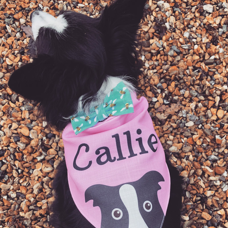 Callie with her Personalised Yappicon Bandana
