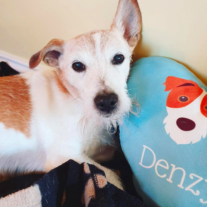Denzy with his heart shaped Personalised Cushion