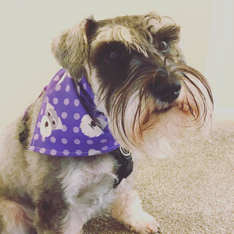 Florita with her Icon Bandana
