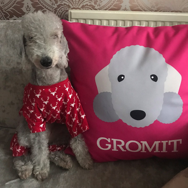 Gromit with his Personalised Icon Cushion