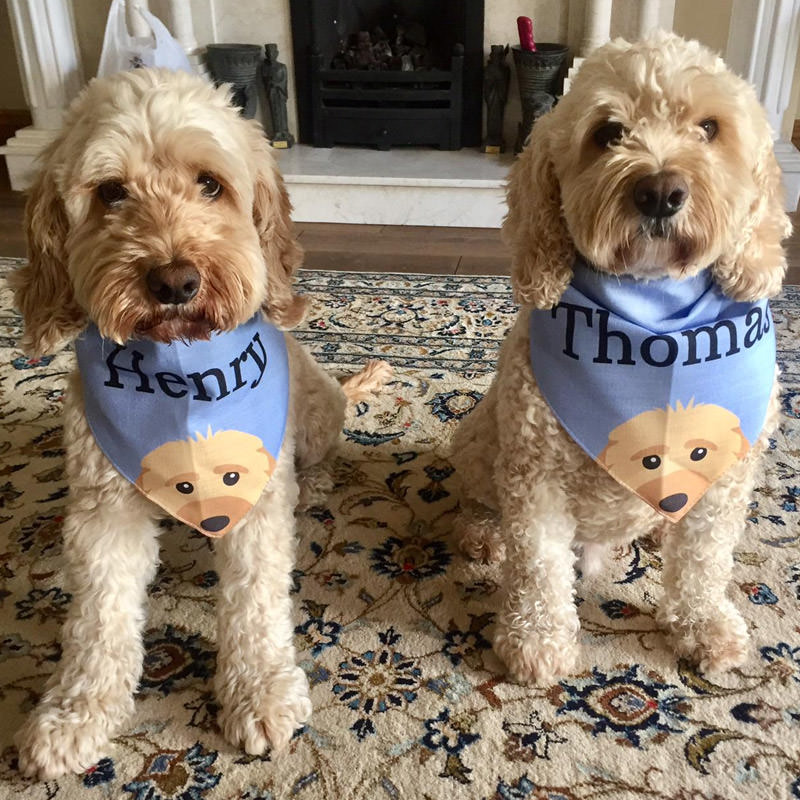 Henry and Thomas with their Personalised Yappicon Bandanas