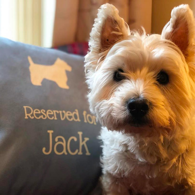 Jack with his Reserved for Cushion