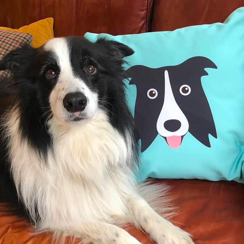 Lottie with her Icon Cushion