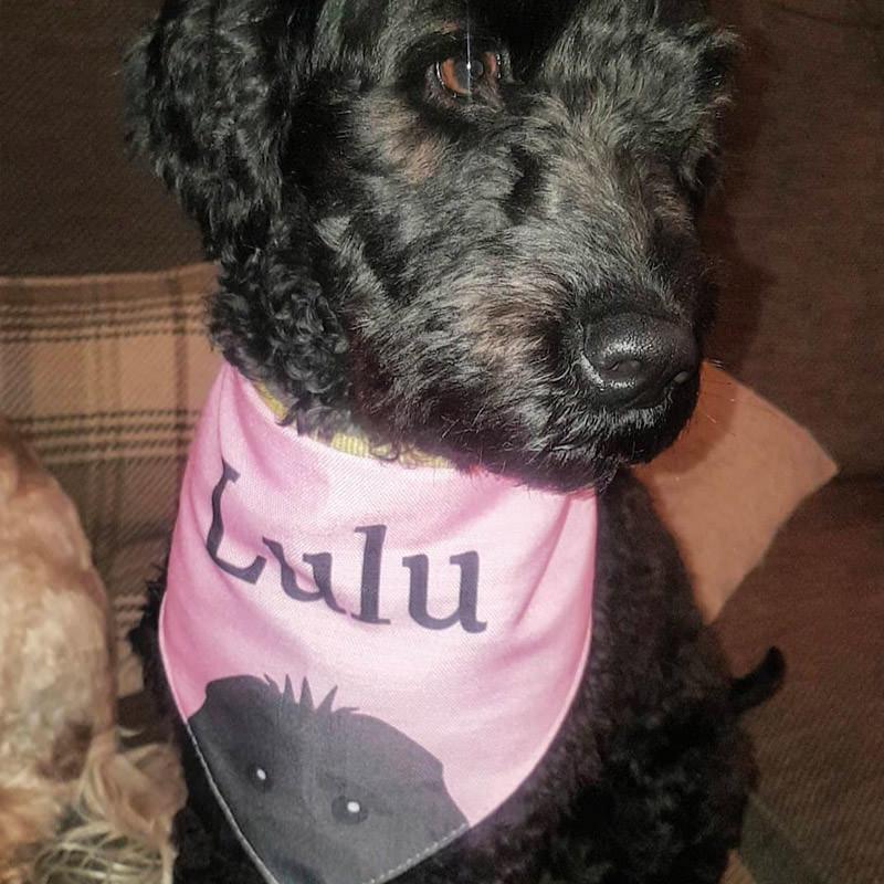 Lulu with her Peeking Bandana