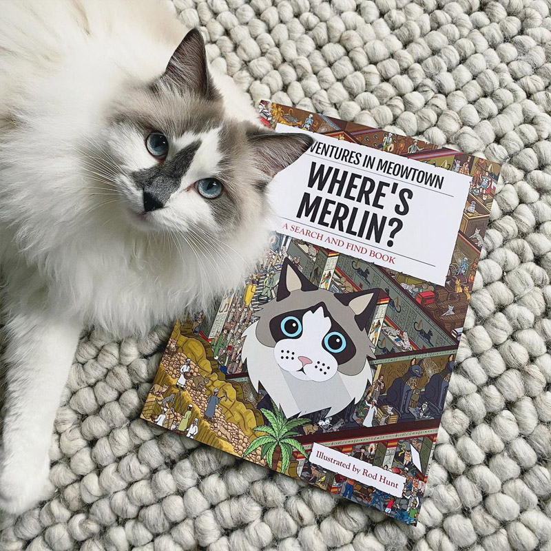 Photo of Merlin with a Personalised Where's Book