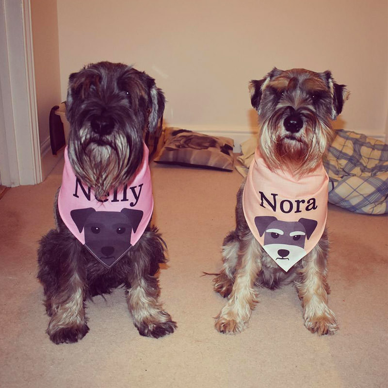 Nelly and Nora with their Peeking Bandana