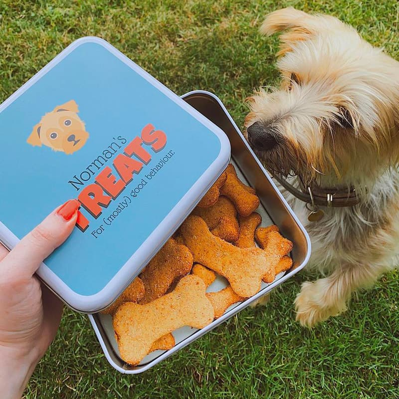 Norman with a Personalised Yappy Treat Tin
