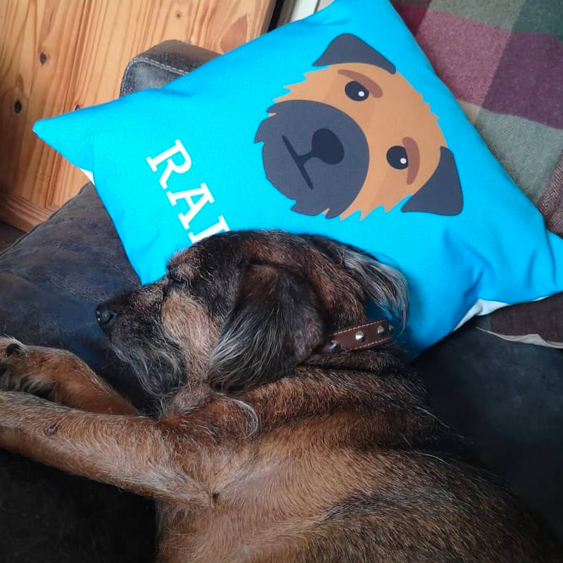 Ralph with his Personalised Icon Cushion