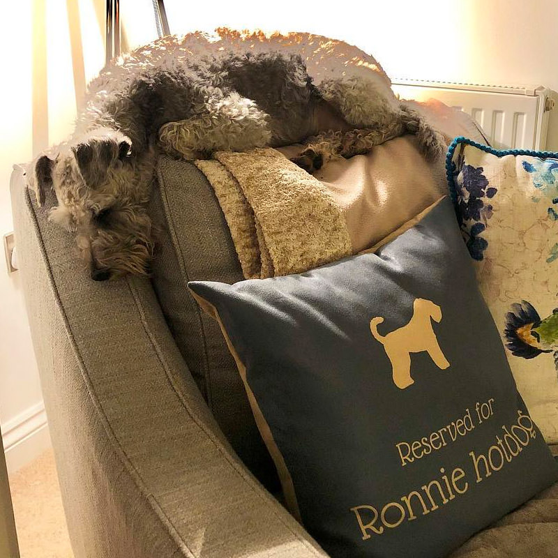 Ronnie Hotdog with her Personalised Reserved For Cushion