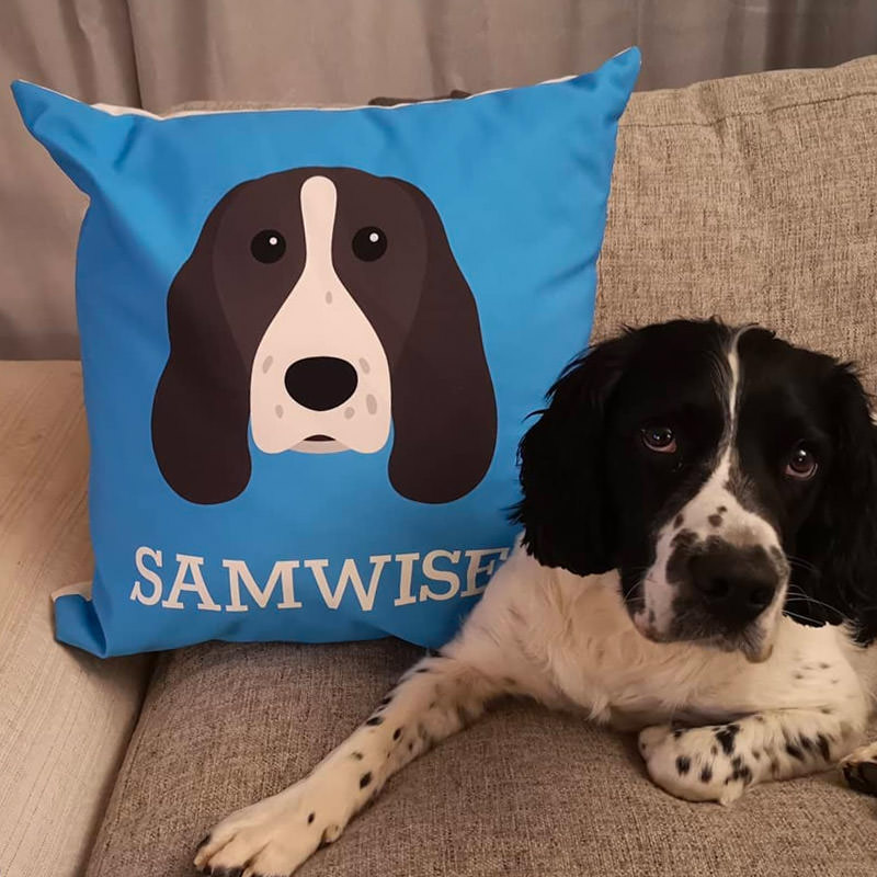 Samwise with his Personalised Dog Icon Cushion
