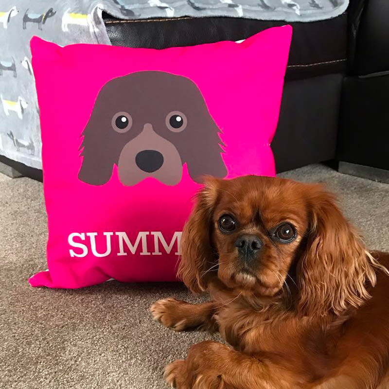 Summer with her Personalised Dog Icon Cushion
