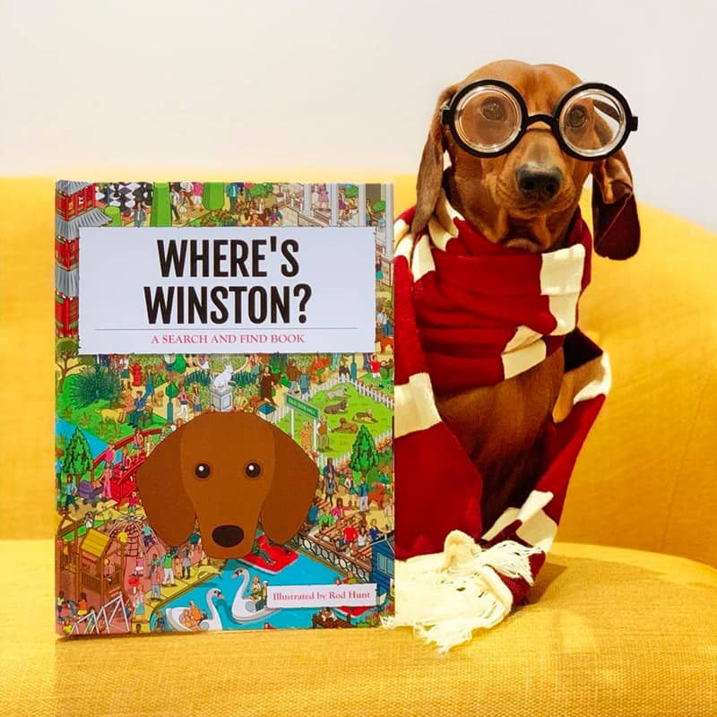 Winston with his Personalized Where's Book