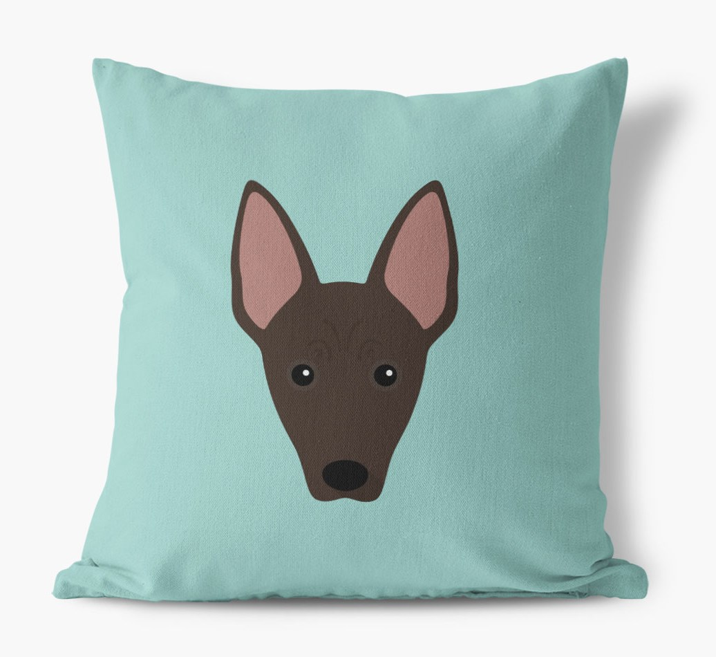 {colour} Mexican Hairless Icon Canvas Cushion front view