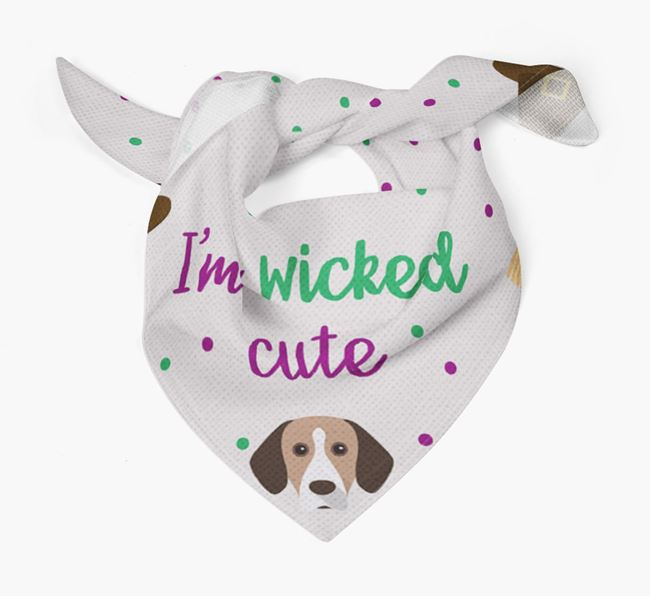 'I'm Wicked Cute' Bandana for your Bavarian Mountain Hound