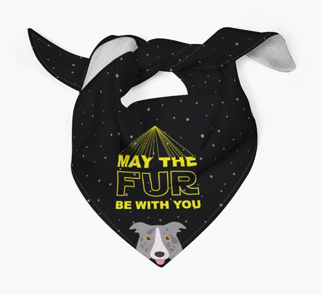 'May The Fur Be With You' Bandana for your Border Collie