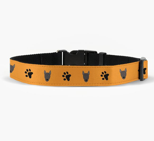 Fabric Collar with Paw Prints and Mixed Breed Icon