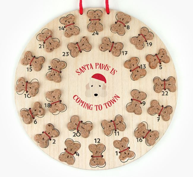 Personalised Dog Biscuit 'Santa Paws' Advent Calendar with Bedlington Terrier Icon