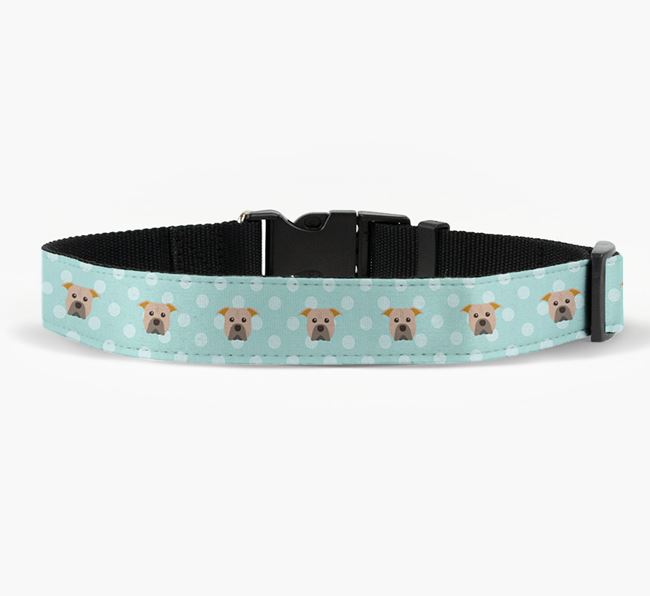Fabric Collar with Spots and American Pit Bull Terrier Icon