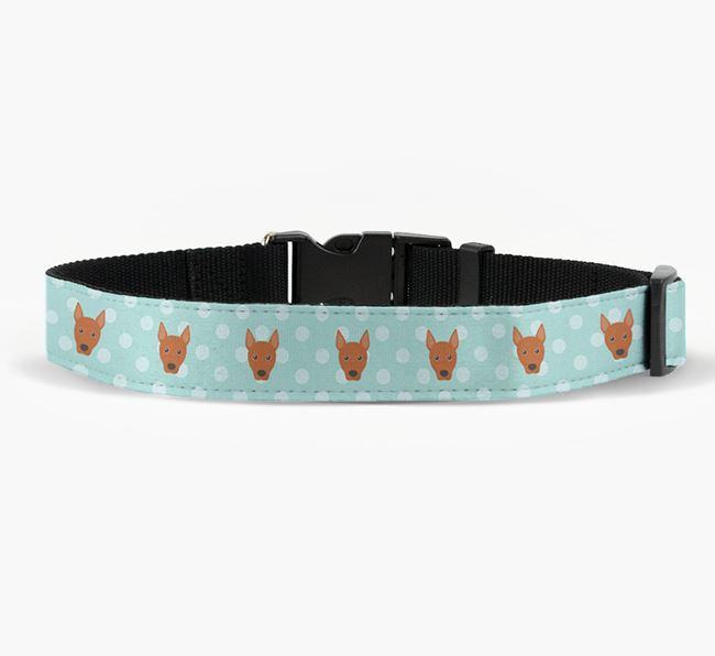 Fabric Collar with Spots and Basenji Icon