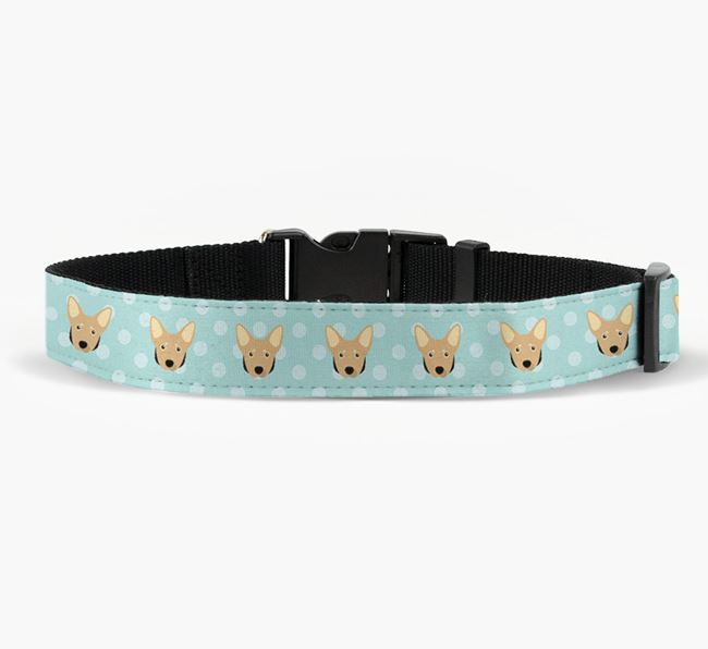 Fabric Collar with Spots and Lancashire Heeler Icon