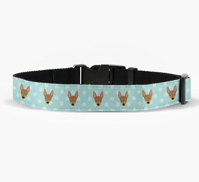 Fabric Collar with Spots and Miniature Pinscher Icon