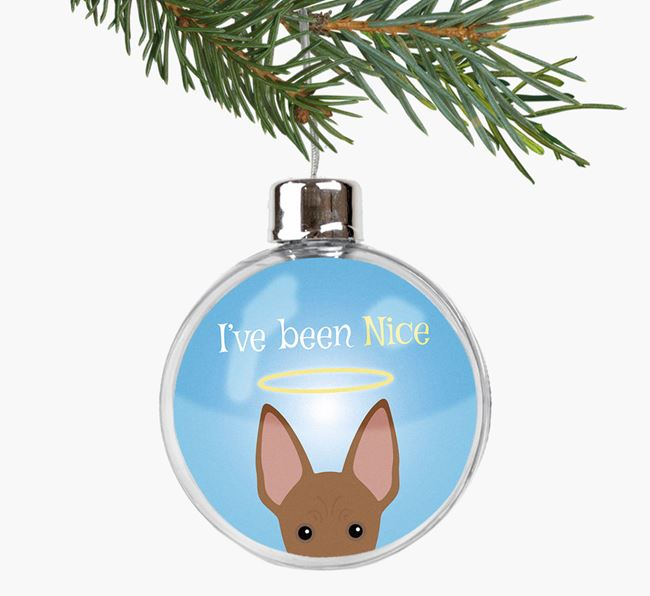 'I've been Nice' Fillable Bauble with your American Hairless Terrier Icon