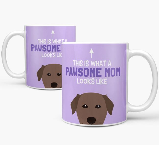 'Pawsome Dog Mom' Mug with Golden Labrador Icon