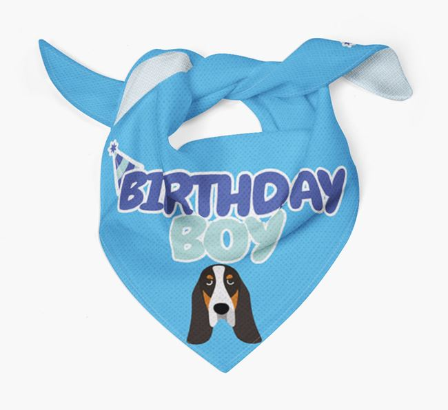 'Birthday Boy' Bandana with Basset Bleu De Gascogne Icon