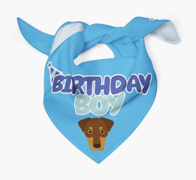 'Birthday Boy' Bandana with Dobermann Icon