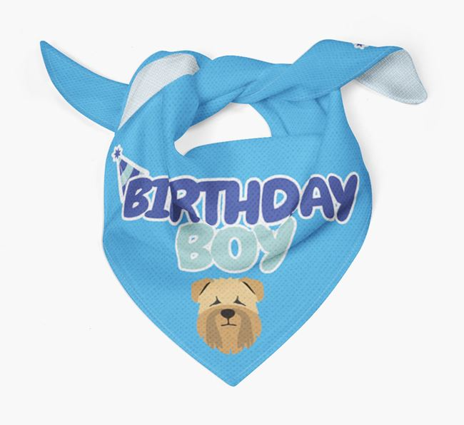 'Birthday Boy' Bandana with Soft Coated Wheaten Terrier Icon