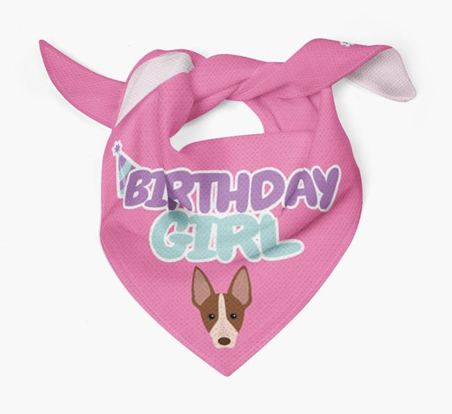'Birthday Girl' Bandana with American Hairless Terrier Icon
